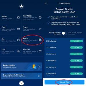 foto van hoe je crypto.com krediet moet gebruiken