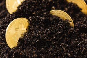 De toekomst van bitcoin in 2021 en verder
